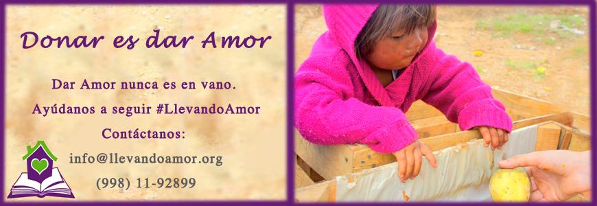 donaciones llevando amor